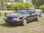 My Mustang History